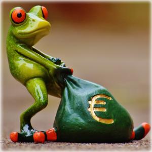 frog_bag_euro